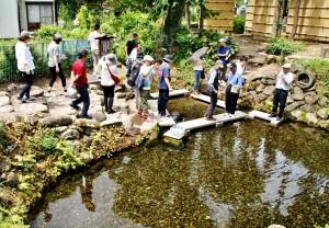 六郷湧水群・御台所清水(おだいどころしみず)。日本の名水百選にも選ばれています
